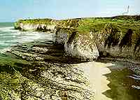 Flamborough Head - North Yorkshire