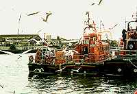 Poole Harbour Lifeboats