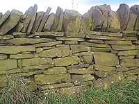 South Yorkshire Dry Stone Wall